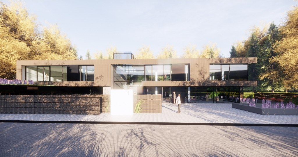 Modern House in rural Location / Perspective View 03