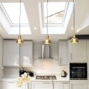 Taylor House / Kitchen and Skylights
